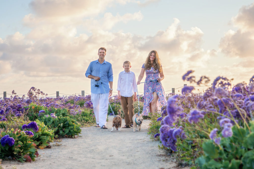 Family walking their dogs among the flowers.